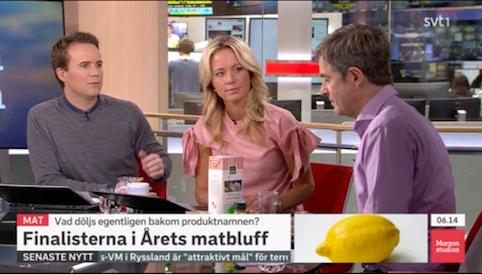 SVT Morgonstudion