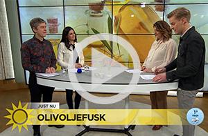 Björn i TV4 om olivoljefusk